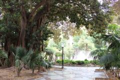 Park-II