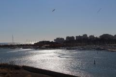 Blick-auf-den-Hafen