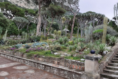 2_Botanischer-Garten-I