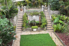 Botanischer-Garten-V