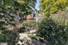 Schlossgarten-2