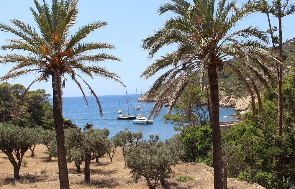 Mallorca – Eine Insel mit unzähligen Calas